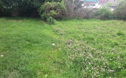 Two vacant lots in Cleveland s